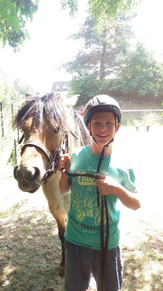 Zajęcia z psychopedagogicznej jazdy konnej-terapia z koniem