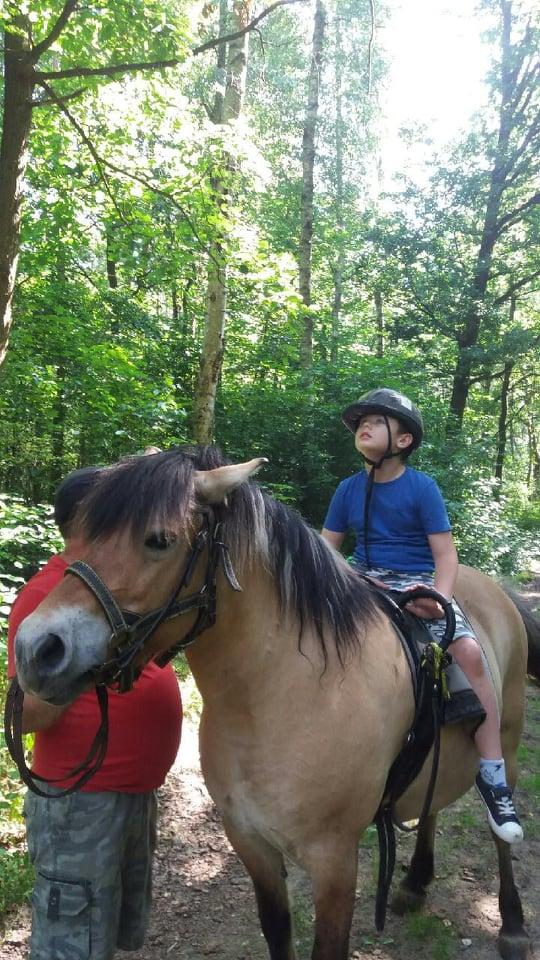 Zajęcia z psychopedagogicznej jazdy konnej-praca nad poprawą kontaktu-chłopiec siedzi na grzbiecie konia